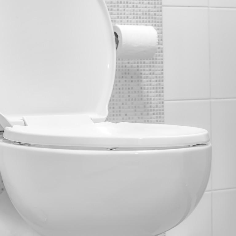 Remplacement d'abattant WC